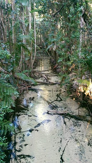 wangoolba creek